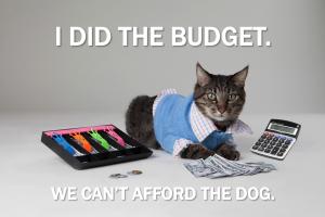 How we budget