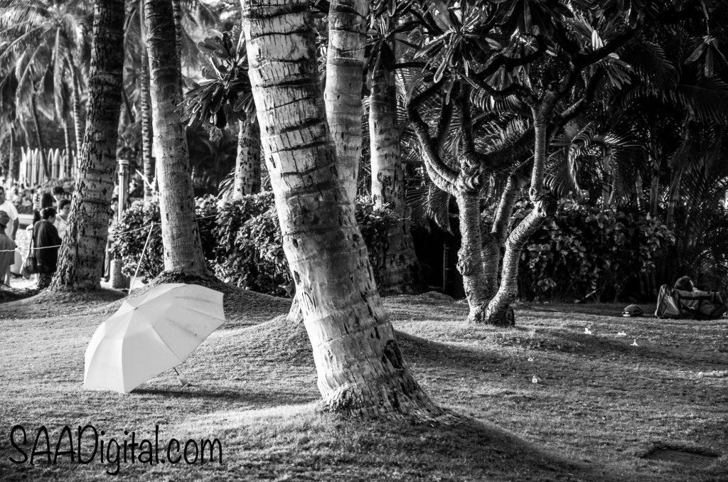 Waikiki Beach on the island of Oahu, HI