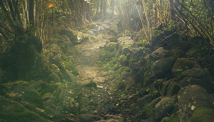 Joe's life-changing 2,200 mile hike along Appalachian Trail