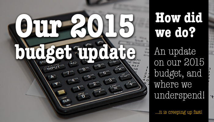 Our 2015 budget update - how did we do?