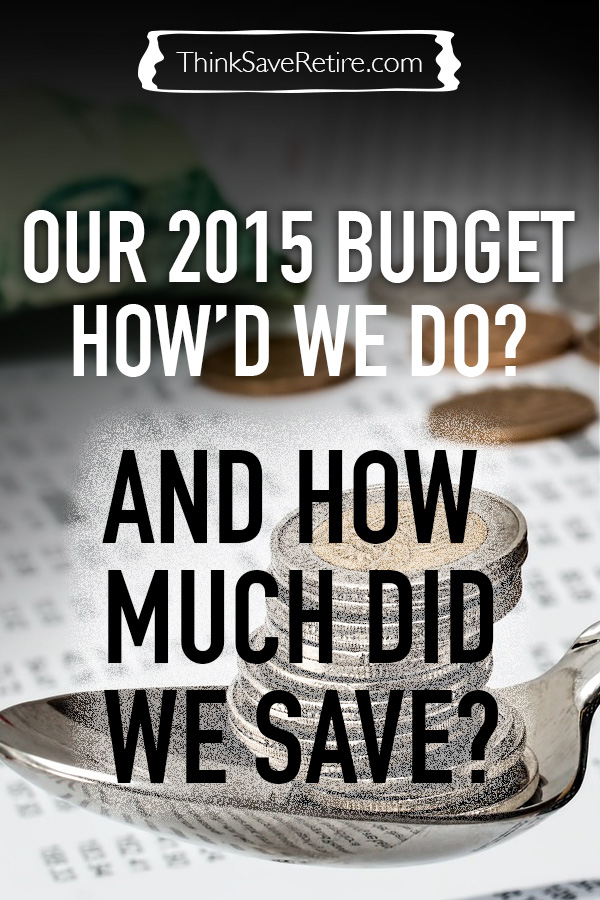 Our 2015 Budget: How much did we save over the year?