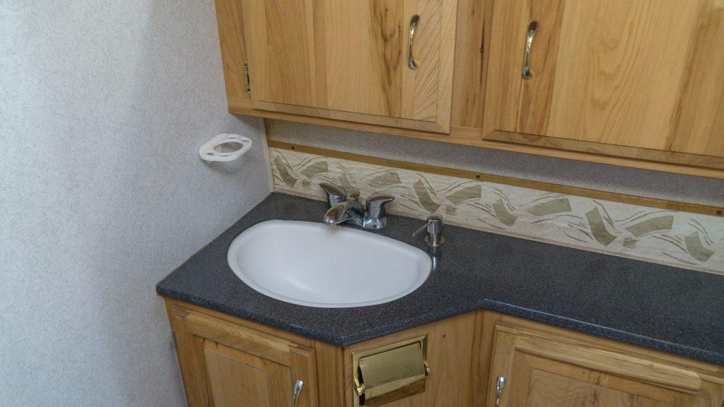 The bathroom sink