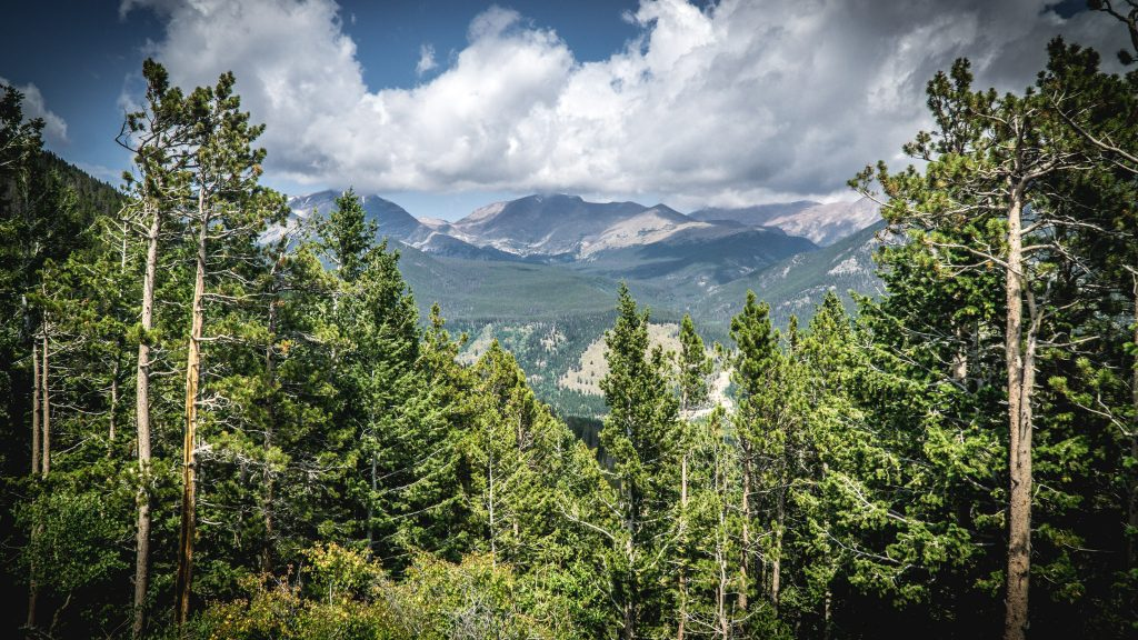 A view inside Rocky Mountain National Park
