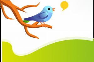The Twitter bird