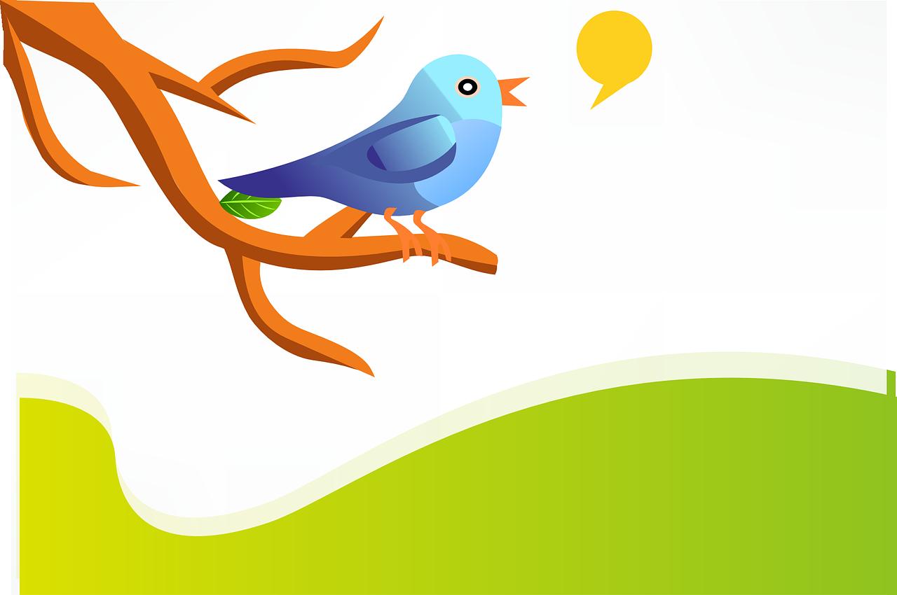 I will tweet your favorite blog post!