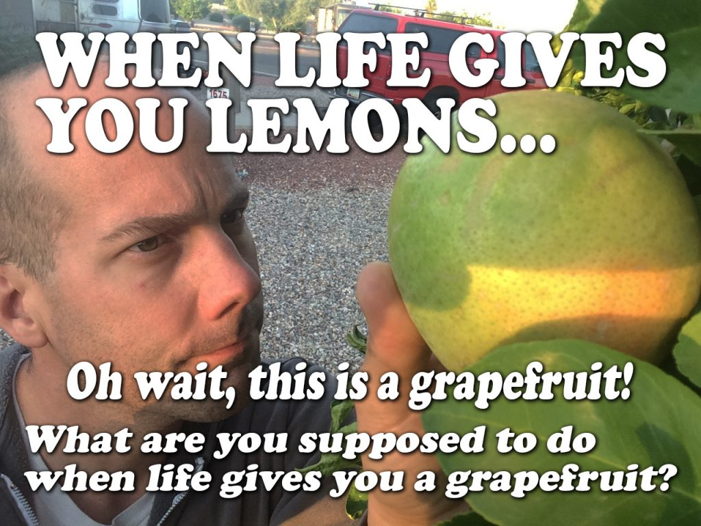 When life gives you lemons...or a grapefruit?