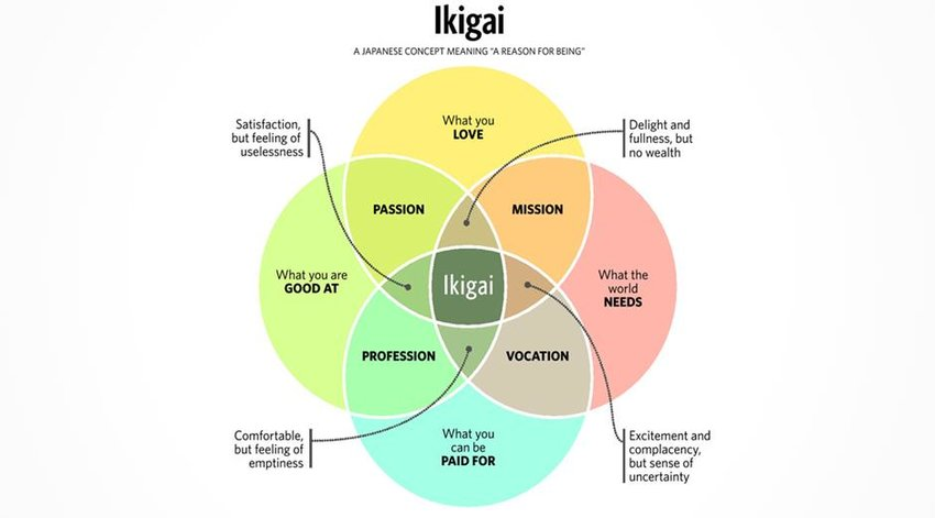 "The Japanese word, Ikigai, translates to ""the reason you get out of bed in the morning"""